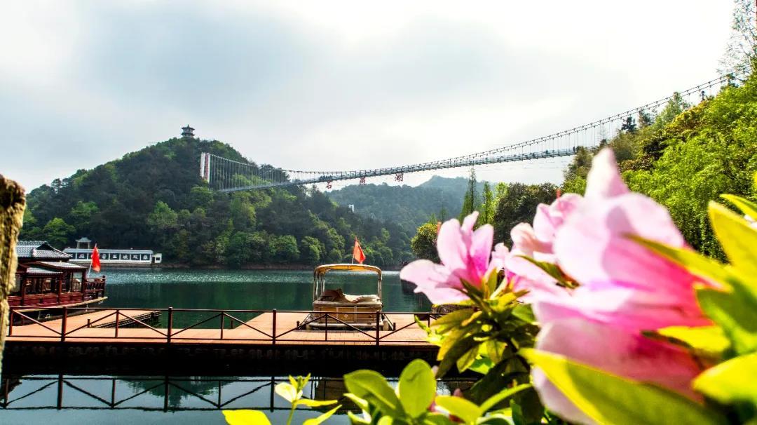 清明踏春时丨赏樱花、穿汉服、吃青团...打卡网红景点,感受惬意春天~