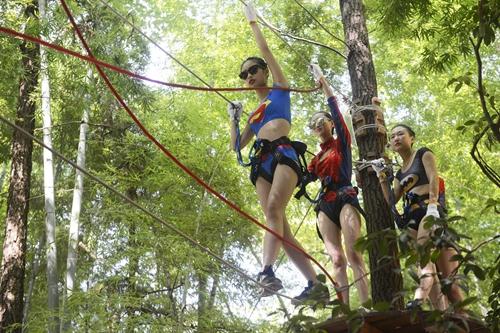 玩转树上穿越,来一场刺激的冒险之旅