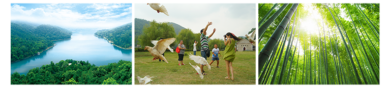 石燕湖住宿