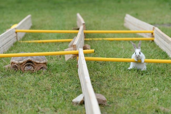 长沙石燕湖举行趣味运动会